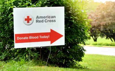 Help Save Lives at the Talladega Superspeedway Blood Drive
